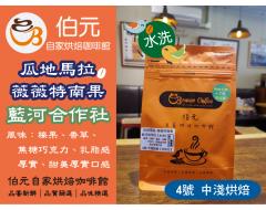 【伯元咖啡】中淺烘焙-瓜地馬拉-微微特南果-藍河莊園【水洗】半磅咖啡豆、手工挑豆